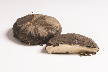 Muscatis